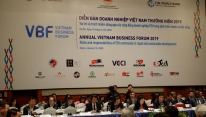 VBF 2019: FDI has role and responsibilities in...